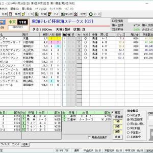 第36回東海テレビ杯東海ステークス(G2) 2019 結果