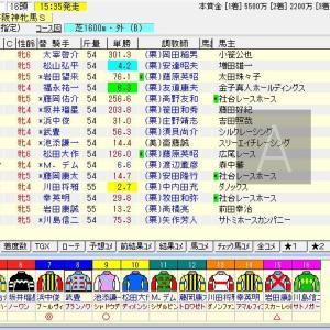 第63回サンケイスポーツ杯阪神牝馬ステークス(G2) 2020 予想