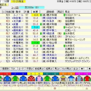 第56回農林水産省賞典函館記念(G3) 2020 予想