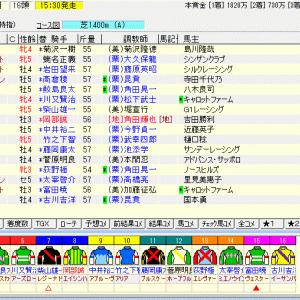 第72回農林水産省賞典阪神ジュベナイルフィリーズ(G1) 2020 予想
