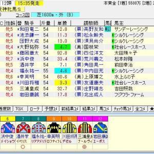 第64回サンケイスポーツ杯阪神牝馬ステークス(G2) 2021 予想