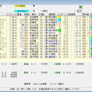 第69回トヨタ賞中京記念(G3) 2021 予想