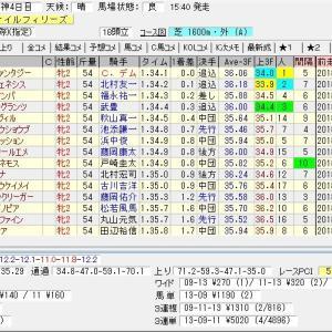 第70回農林水産省賞典阪神ジュベナイルフィリーズ(G1) 2018 結果