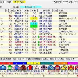 第51回函館2歳ステークス(G3) 2019 予想