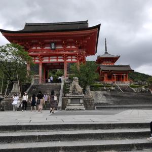 観光客激減⁉4連休は近場の京都旅行へ