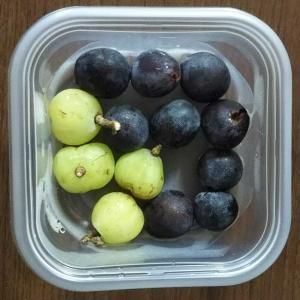 長月の雨露と葡萄、季節を味わう。