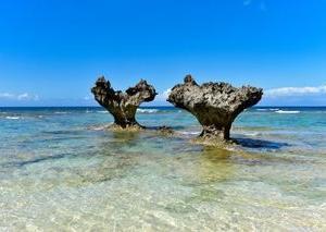 ニーズツアーて、何がいいの?<br />沖縄・北海道旅行が他社より安い、口コミから分かること