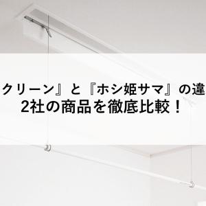 ホシ姫サマとホスクリーンの違いは?2社の商品を徹底比較!