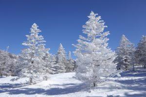 都合良く 雪よ降れ 『想い出の赤いヤッケ』(1967年)