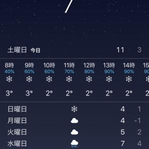 明日から雪のモスクワ!
