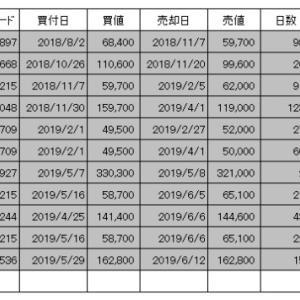 個別株投資スタートから2019年6月までの成績