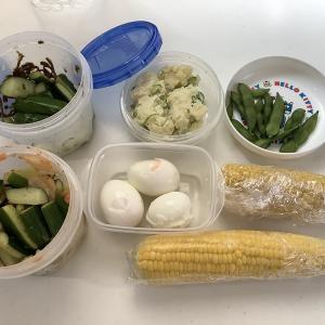 【ダイエット中の食事】ダイエットのために作り置きを始めました!