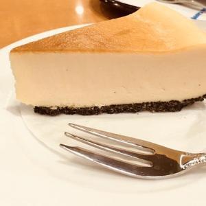 NYチーズケーキ/エクセルシオールカフェ