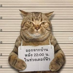 門限破りは逮捕