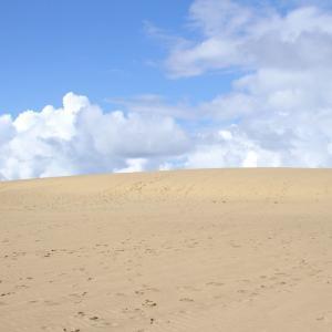 【鳥取】鳥取砂丘を踏破する