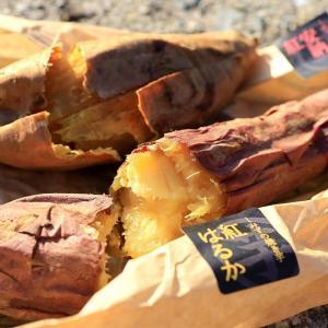 秋の味覚さつまいも!高級芋菓子しみずの焼き芋&スイートポテトを味わう