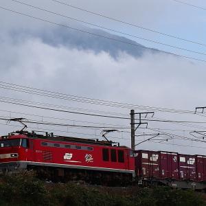 雲海レッド