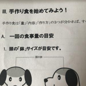 犬の食育①
