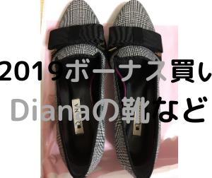 【2019年冬ボーナスで購入】ダイアナの靴・Afternoon teaマグカップの紹介