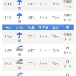 どうなってんだよ(怒)天気!