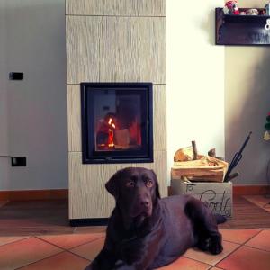 バイオマス蓄熱暖炉「sintesi」シンテシー #福岡暖炉ブログ