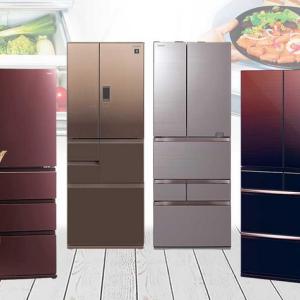 家や家庭に必要無い物リスト②大型冷蔵庫