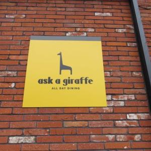 ask a giraffe