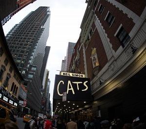 キャッツ映画の感想。あらすじや劇団四季、ロンドン版との違いは?