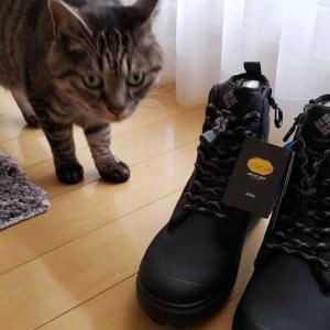 すべらない『靴』のお話。