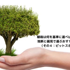 植栽は何を基準に選べばいいのか。 独断と偏見で選ぶおすすめの植栽(その4)