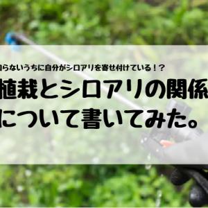 自らシロアリを寄せ付けている!? 植栽とシロアリの関係について書いてみた。