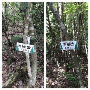 高槻森林観光センタ ~ 明神ヶ岳 ~ 黒柄岳 ~ P