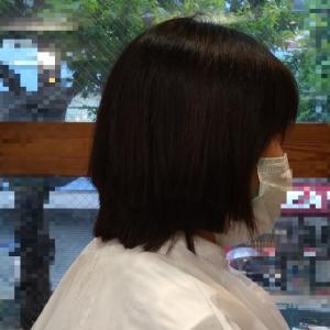ヘアドネーションへの道~3年延ばした髪の毛を寄付しました~
