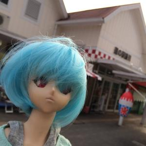第⑤段・富士山に寄って箱根のつもりが浅間大社に。もちろんレイちゃん