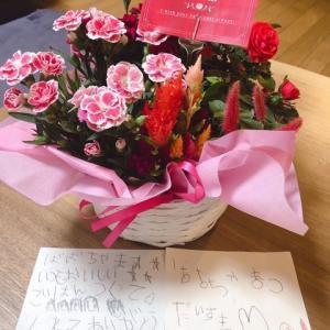 Mother's Day&グリーン胡蝶蘭