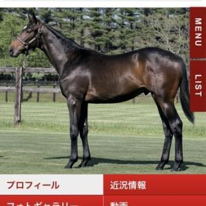 東京TC新規募集馬☆