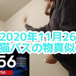 【2020年11月26日】寝る前にぶっつけ1回カウントアップチャレンジ