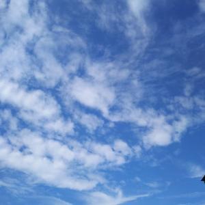 雲の写真の解説 ②