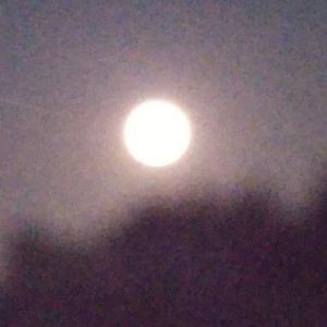 8月の満月さんですよ~