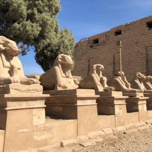 ルクソールへ移動!古代エジプトの首都は伊達じゃない