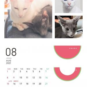 8月のカレンダー 食べ納め 焼きささみ いなば 大人 オリエンタルショートヘア 猫