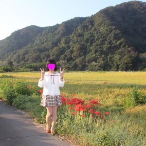 彼岸花の咲く風景 その1