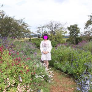 花菜ガーデンの「ローズフェスティバル 2019 ~秋~」へ行って来ました (その2)