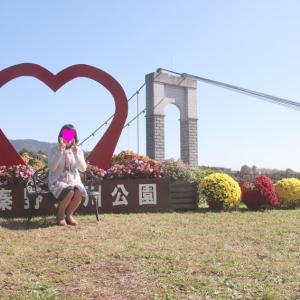 戸川公園のざる菊の咲く風景と
