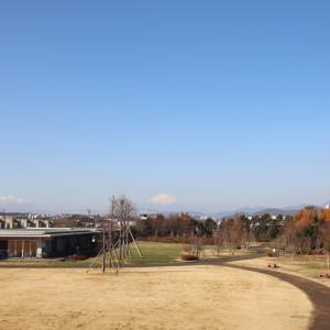 富士山が綺麗でした~。