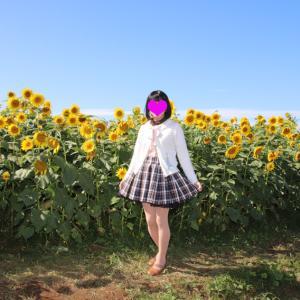 真っ青の空の下、咲く向日葵と一緒に