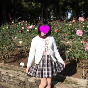 秋薔薇の咲く公園で