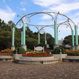 花咲く相模原麻溝公園の散策