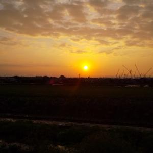 今日の朝の風景