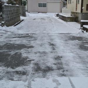 大寒に合わせ10㎝ほど降雪